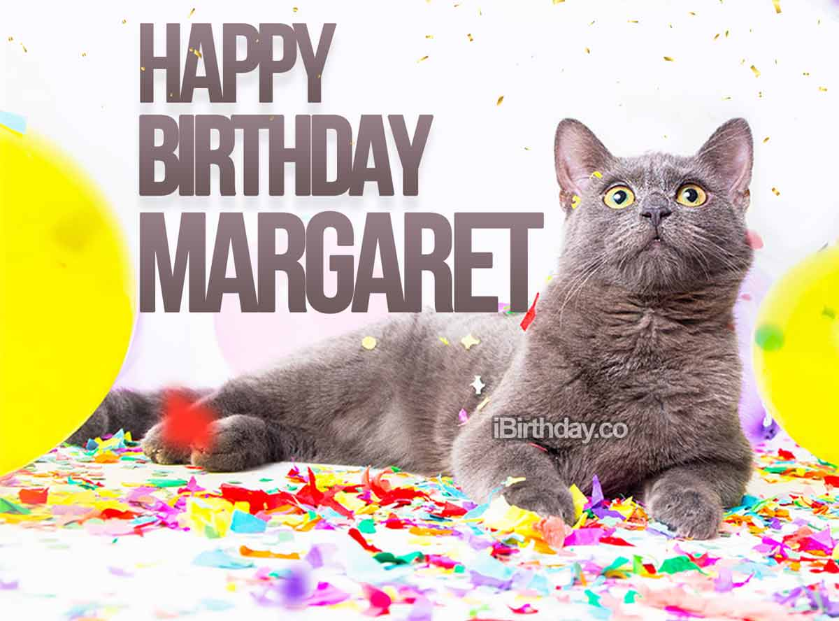 Margaret Cat Birthday Meme
