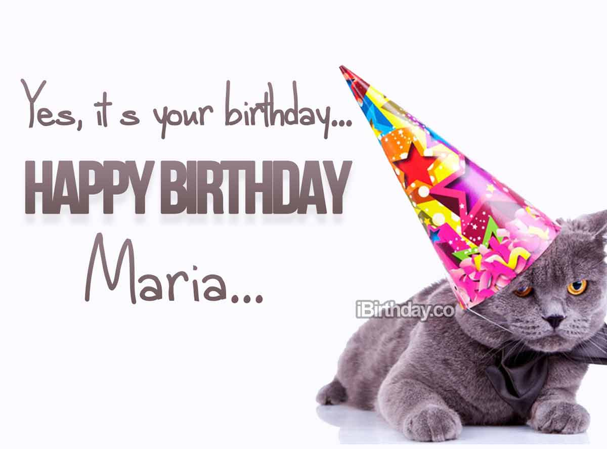 Maria Cat Birthday Wish