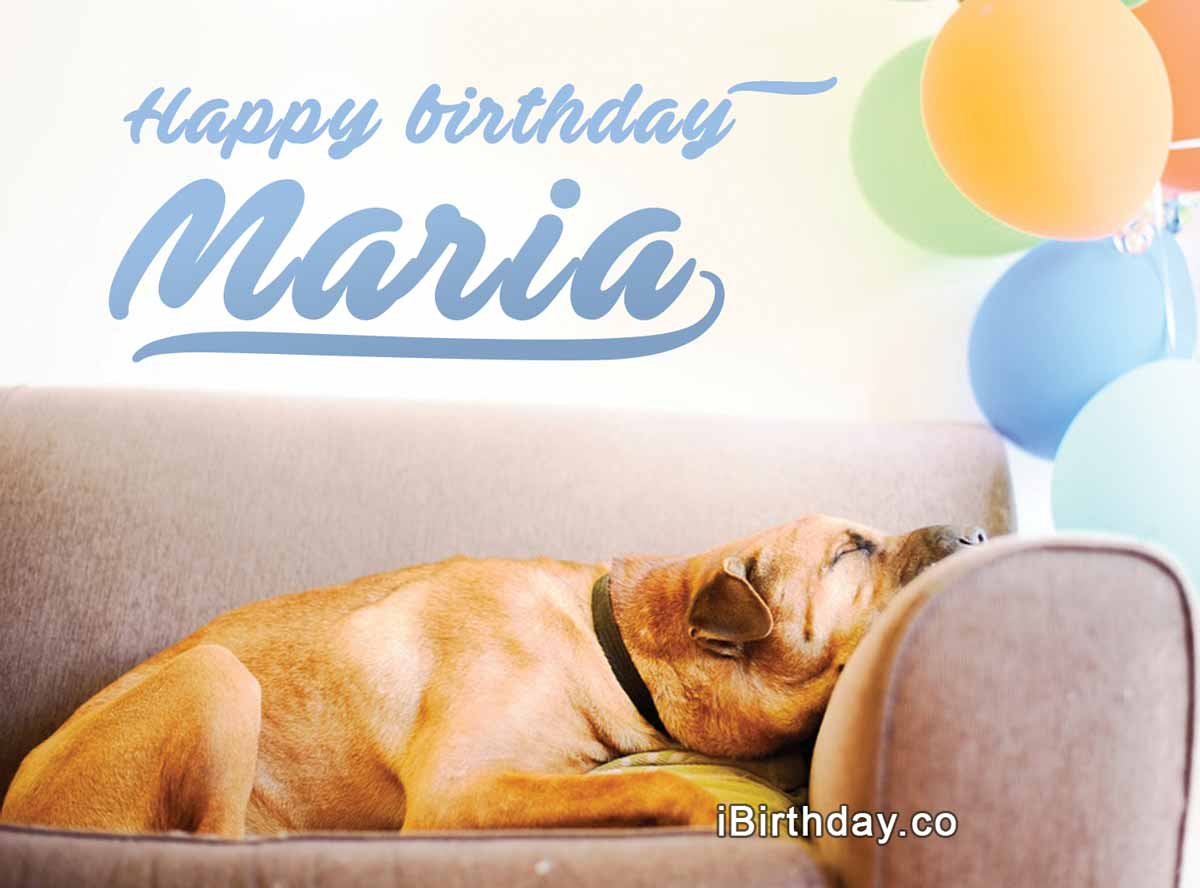 Maria Dog Birthday Wish