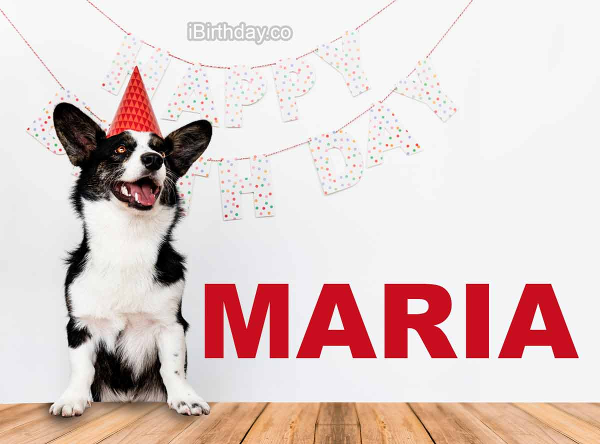 Maria Dog Happy Birthday Wish