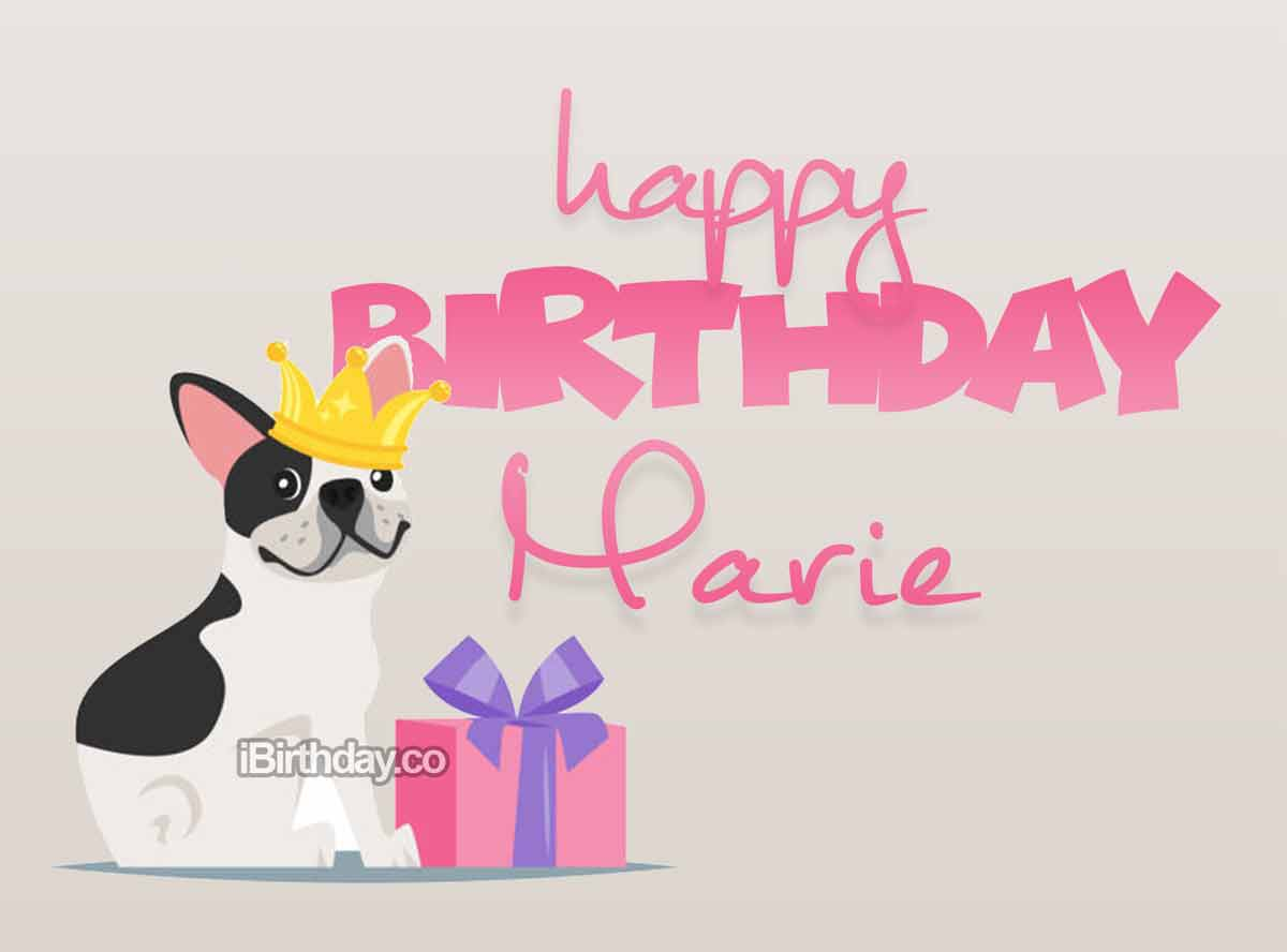 Marie Dog Birthday Wish