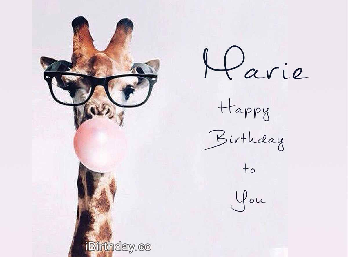 Marie Giraffe Birthday Wish