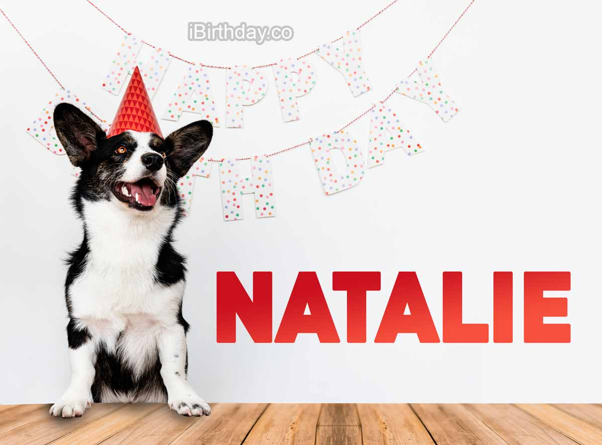 Natalie Dog Birthday Meme