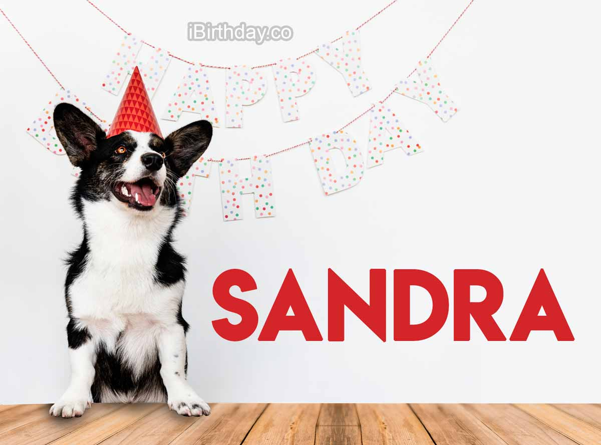Sandra Dog Birthday Meme