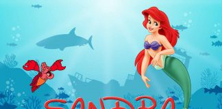 Sandra Little Mermaid Birthday Wish
