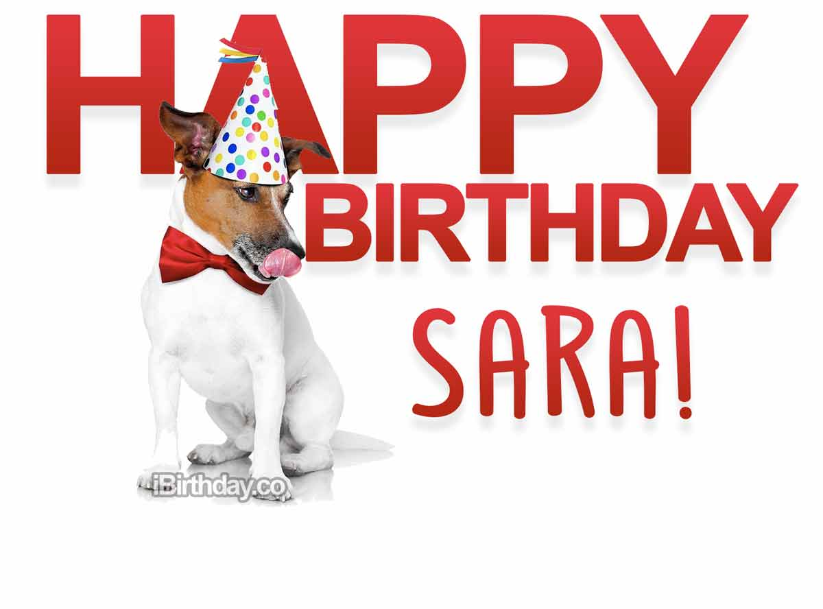 Sara Dog Birthday Meme