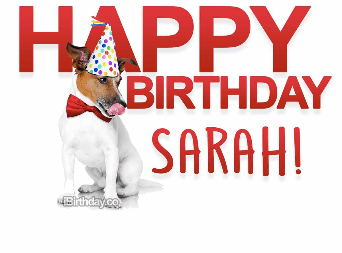 Sarah Dog Happy Birthday