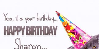 Sharon Cat Birthday Wish