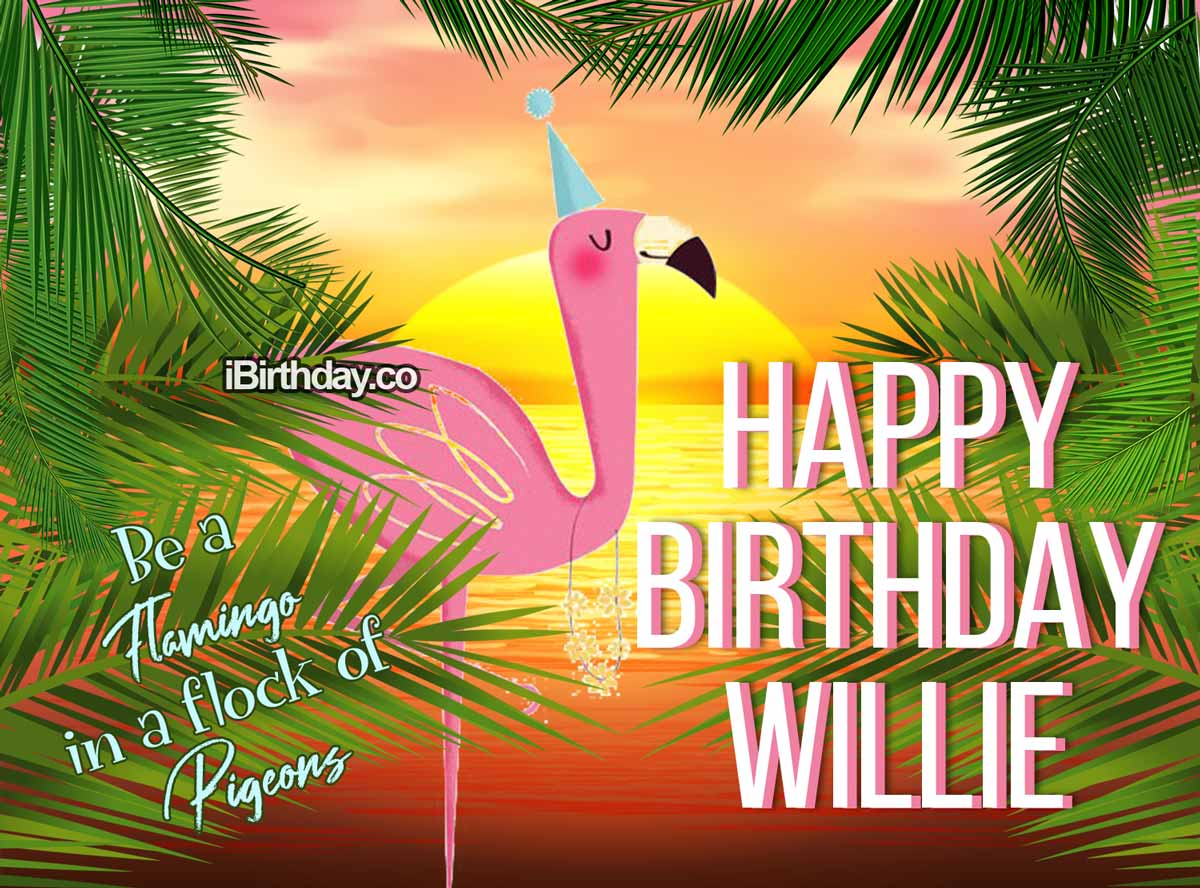 Willie Flamingo Birthday Meme