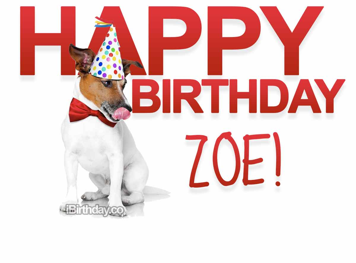 Zoe Dog Birthday Meme