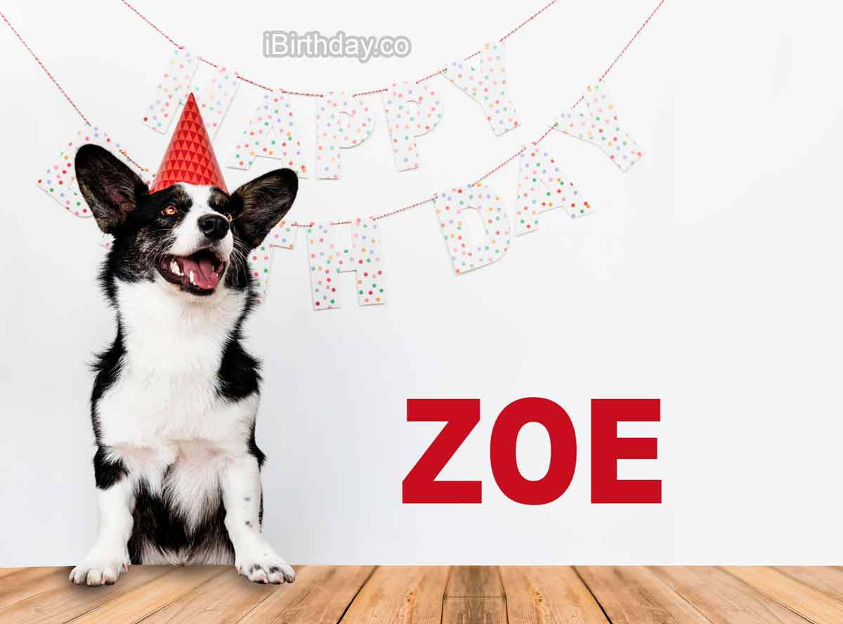 Zoe Dog Happy Birthday Wish