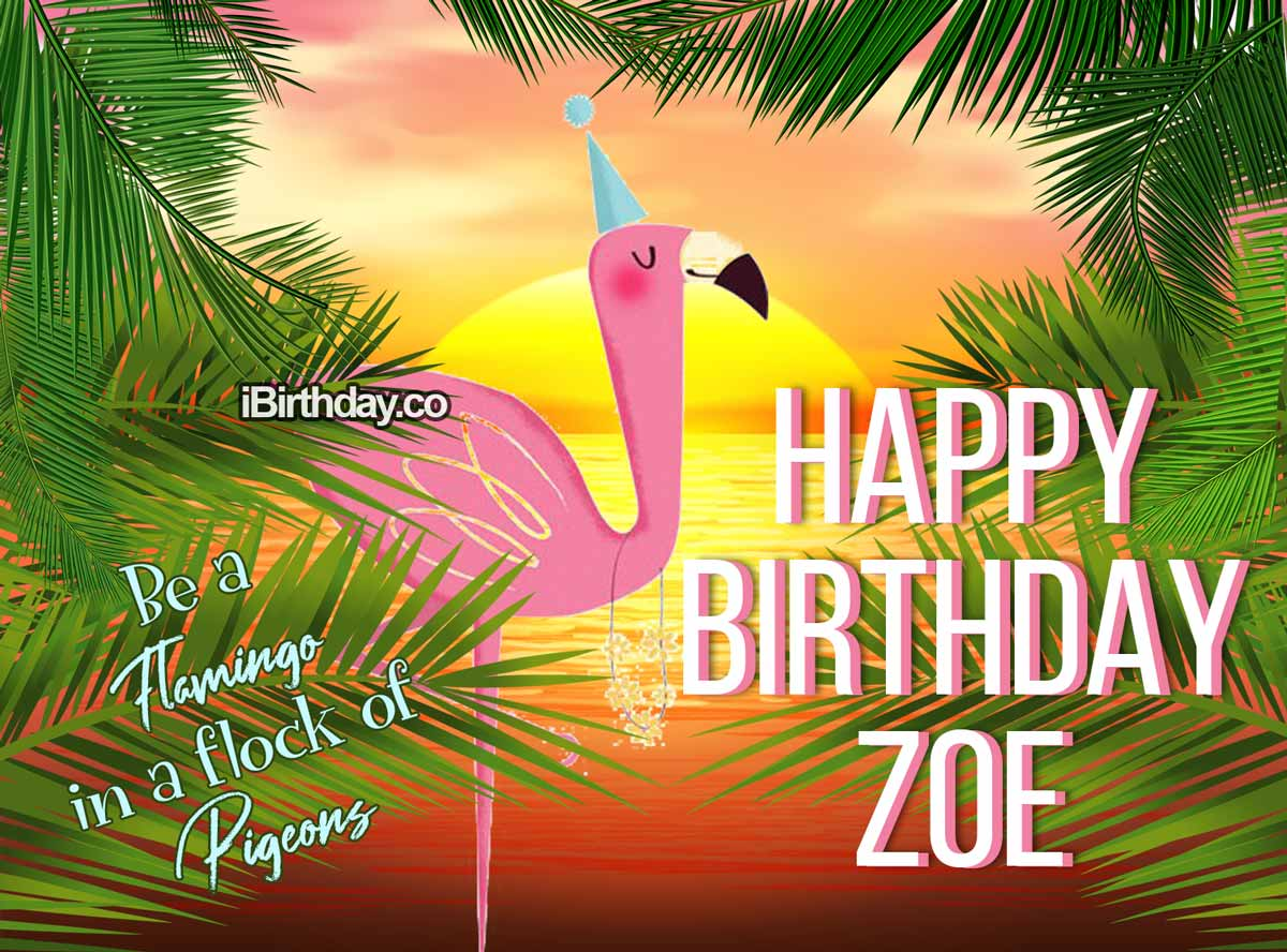 Zoe Flamingo Birthday Meme