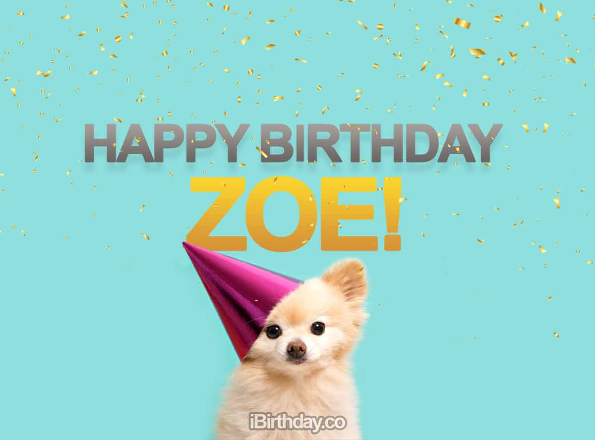 Zoe Happy Birthday Dog