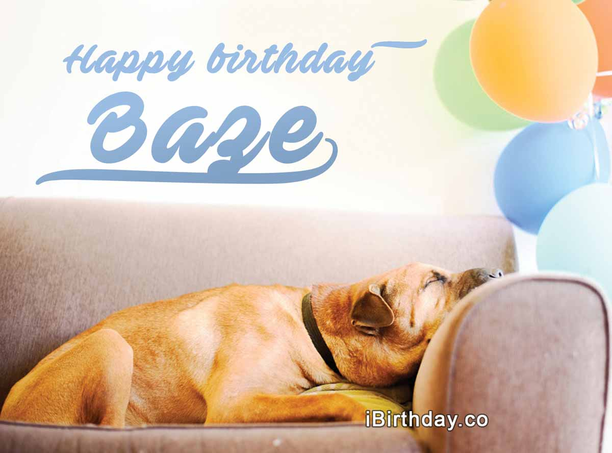Baze Dog Birthday Meme