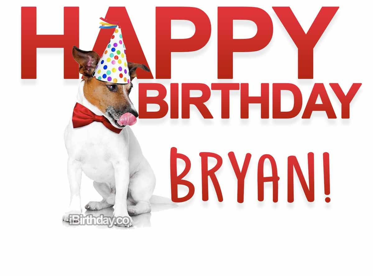 Bryan Dog Happy Birthday