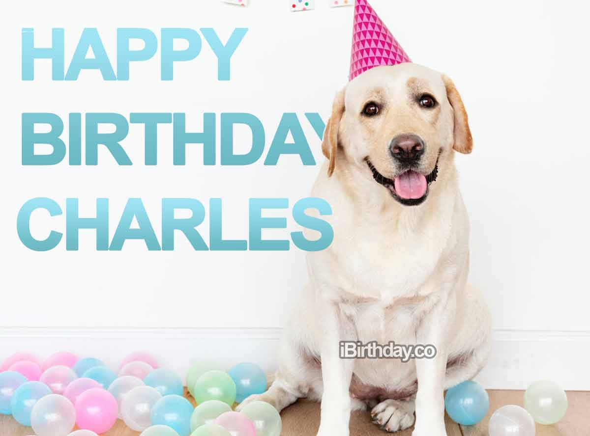 Charles Dog Birthday Wish