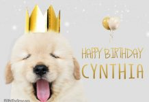 Cynthia Cute Dog Happy Birthday