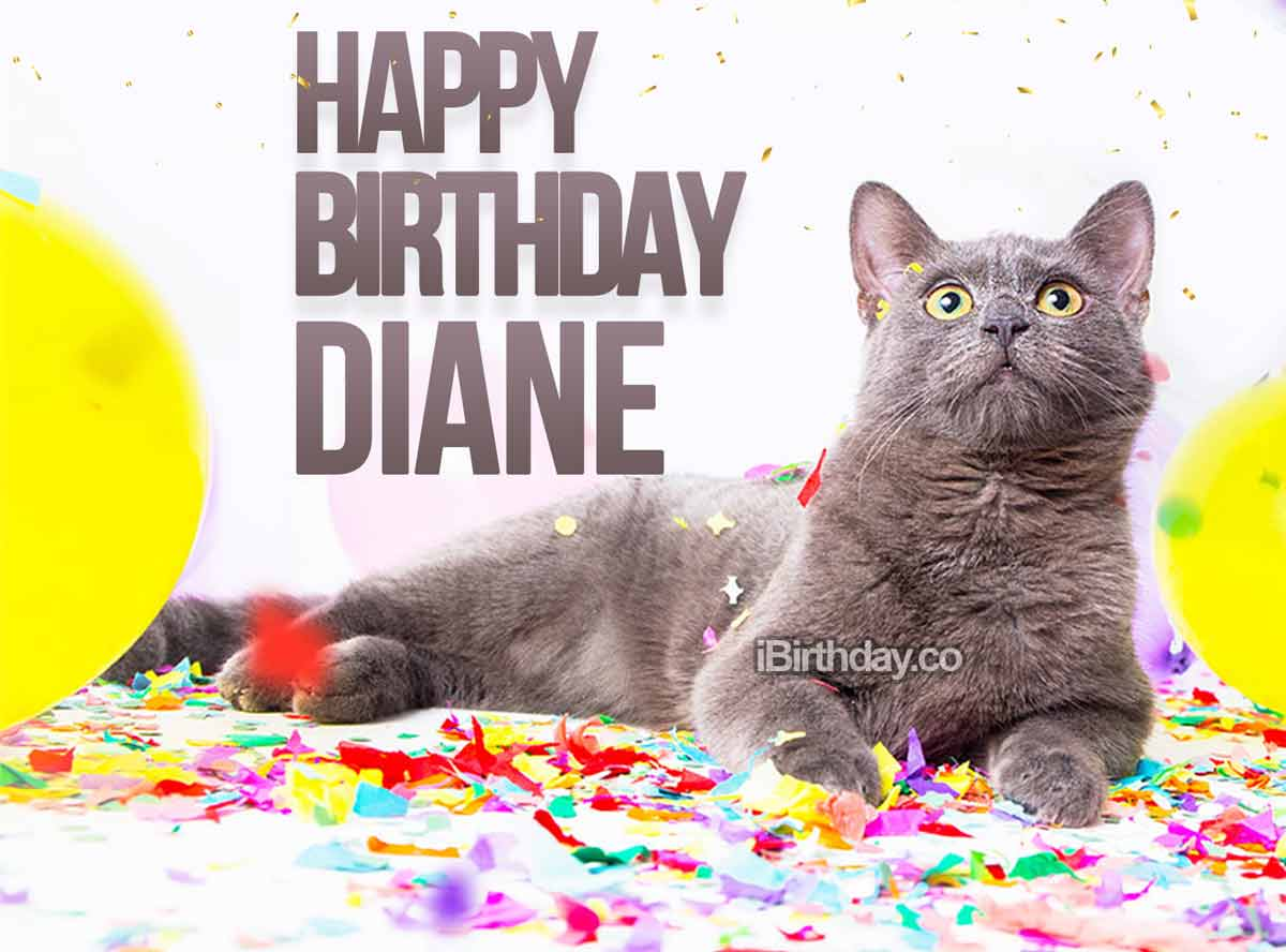Diane Birthday Cat Meme
