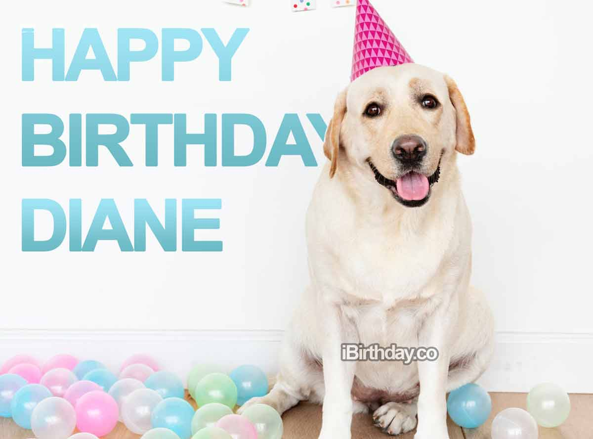Diane Dog Birthday Wish