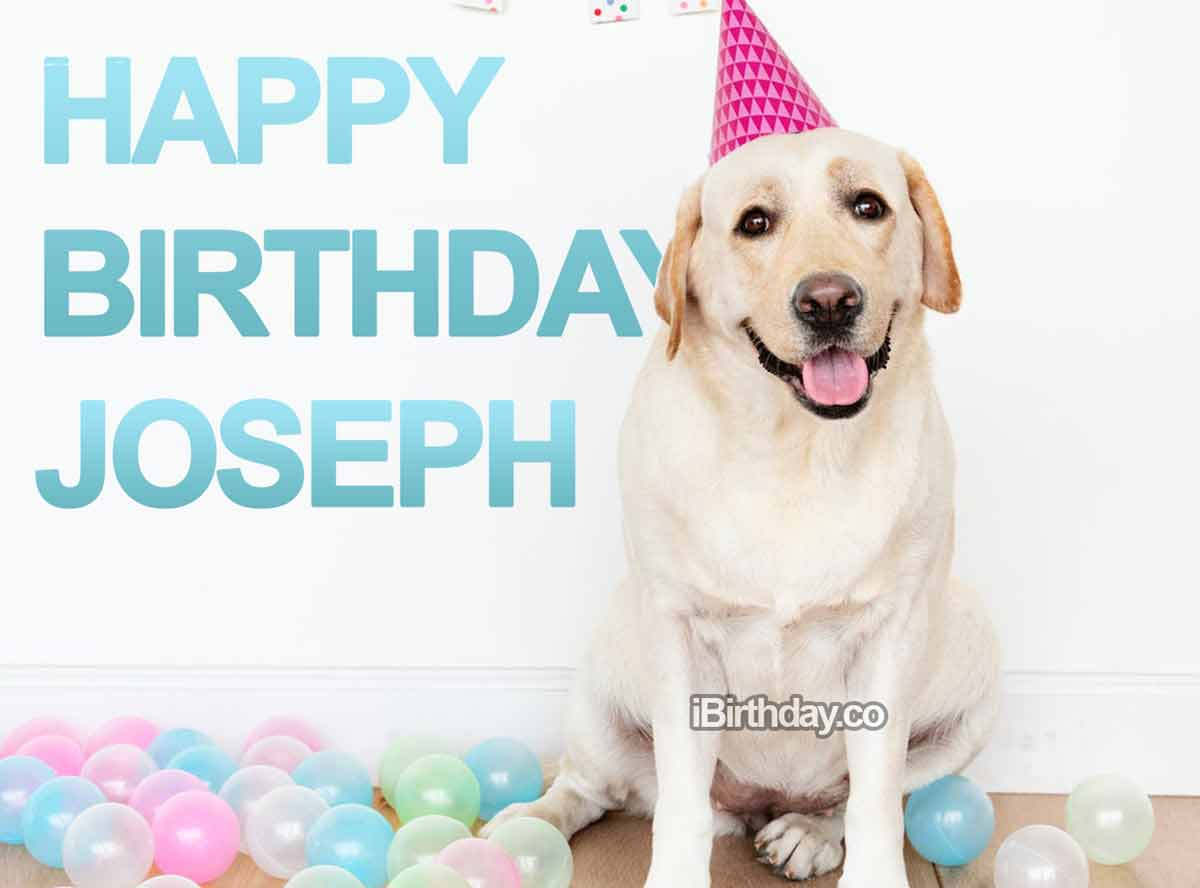 Joseph Dog Happy Birthday