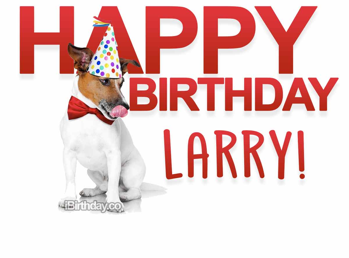 Larry Dog Happy Birthday