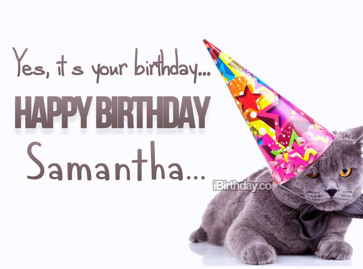 Samantha Cat Happy Birthday
