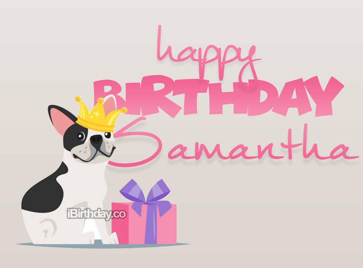 Samantha Dog Birthday Meme