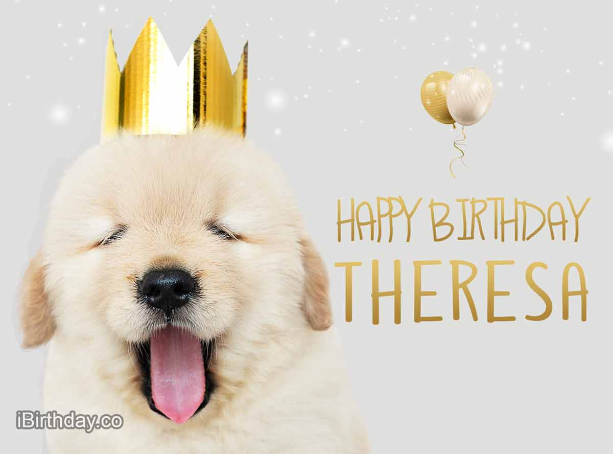 Theresa Dog Happy Birthday